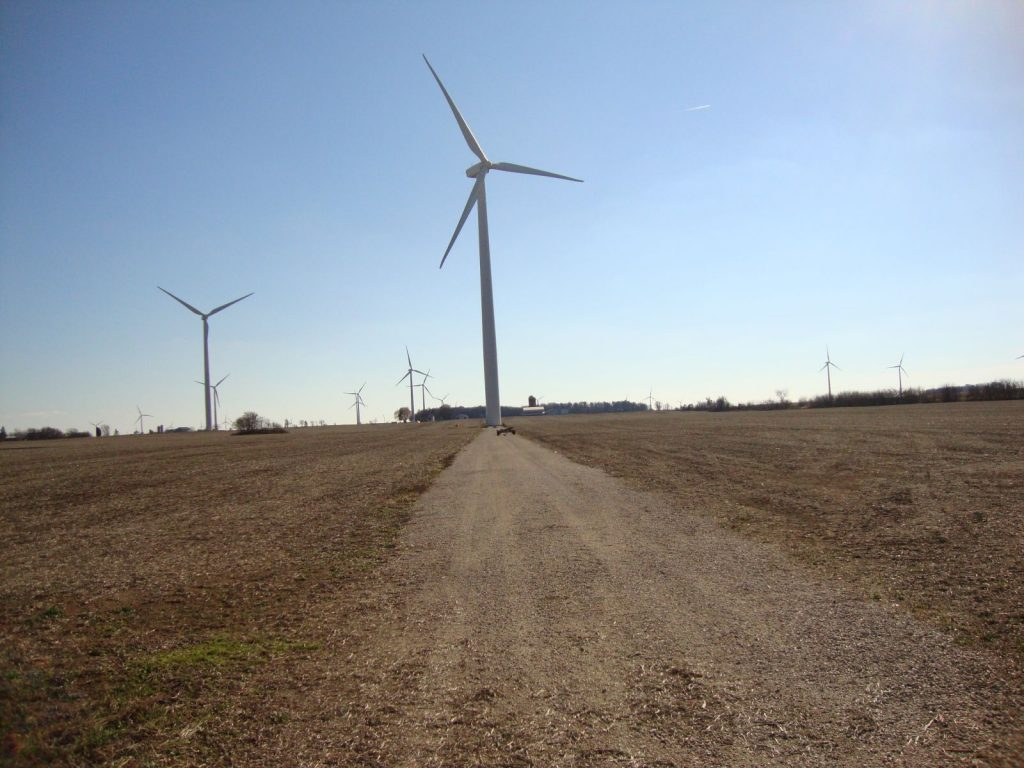 Driveway and wind turbines