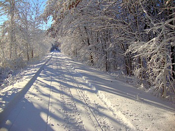 wild-goose-trail